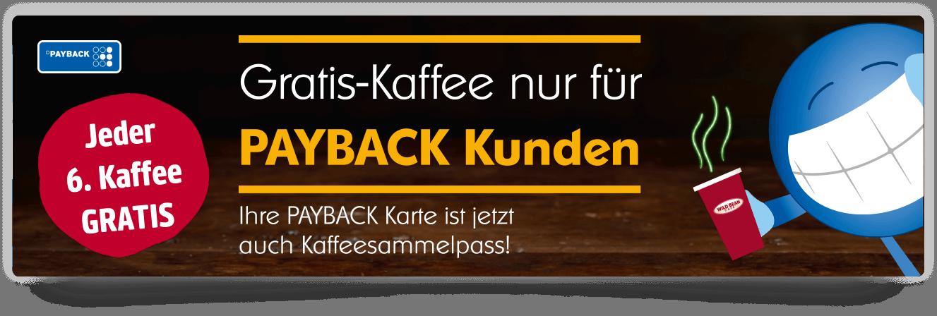 Payback Karte Bestellen.Bp Katalog Punkte Einlösen Im Bp Prämienshop